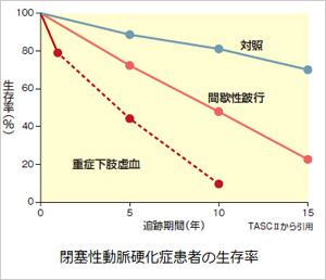 閉塞性動脈硬化症患者の生存率